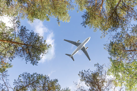Travel, transportation, aviation concept. Wide-body passenger airplane flying overhead against a summer blue sky between the trees, bottom view.