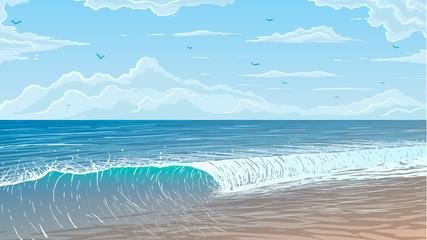 ocean shore in vector