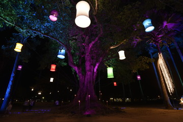 Colorful light probes are hanging on a tree in an festival, Thailand