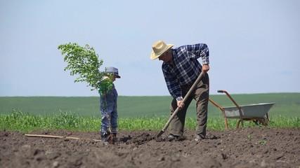 Grandson and grandson plant a tree together, child help grandpa, teamwork