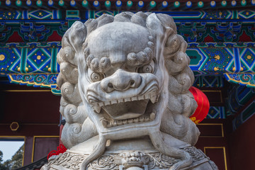 Imperial guardian lion commonly called foo dog in front of gateway of Jingshan Park in Beijing, capital city of China