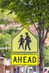 Crosswalk Sign Against green trees in small american town