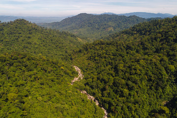 Aerial view waterfall in tropical deep forest green tree