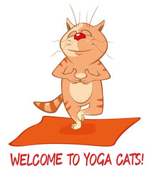 Photo sur Toile Chambre bébé Essential Yoga Poses for Cats. Vector Illustration of a Cute Cat. Cartoon Character