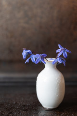 Still life with bluebells in vase closeup