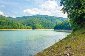 water storage reservoir in mountains. beautiful nature scenery in summer. forest on the shore around. wonderful sunny day with fluffy clouds on the sky