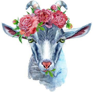 Goat horoscope character watercolor illustration isolated on white background.