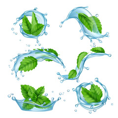 Fototapeta Fresh water mint. Liquid splashes with green menthol leaf for drink vector realistic collection. Illustration of menthol leaf and mint fresh obraz