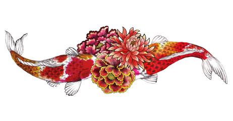 .Carp, Koi, Fish and asian flowers painted watercolor