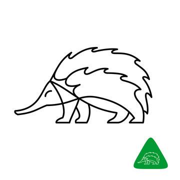 Echidna vector logo. Thin line elegant style echidna illustration.