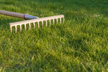 Gartenarbeit mit Harke und Rasen mit Textfreiraum
