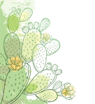 Corner bunch of outline Indian fig Opuntia or prickly pear cactus, flower, fruit and spiny stem in pastel green on the white background.