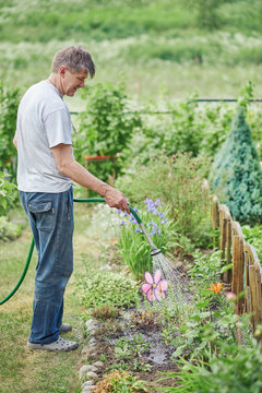 Gardener is watering the flowers from the hose in the personal plot.