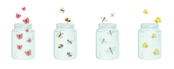 Vector illustration of glass jars with insects inside. Cute summer illustration. Save the moment. Moth, butterfly, bumblebee, ladybug, dragonfly picture