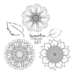 Floral symmetric summer flowers set. Hand drawn Doodle flower. Outline Vector illustration on white background. Collection for pattern, template, banner, posters, invitation and greeting card design.