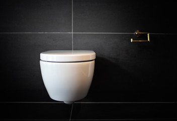 Bathroom modern toilet bowl. Clean toilet bathroom. No paper