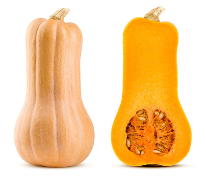 pumpkin butternut squash isolated on white background, full depth of field