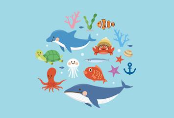海の生き物 セット
