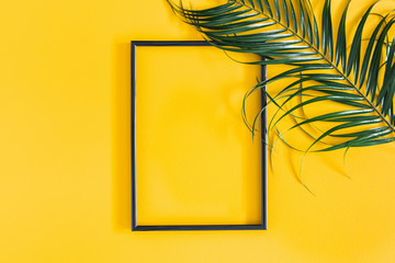 Summer composition. Tropical palm leaves, black photo frame on yellow background. Summer, nature concept. Flat lay, top view, copy space