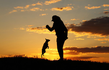 Silhouettes girl playing with a dog on the background of sunset, miniature pinscher breed, incredible sunset, best friends together