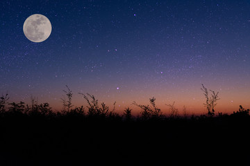 night sky over a field with moon