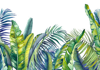 Foto auf Acrylglas Olivgrun Tropical palm and banana leaves. Jungle wallpaper. Isolated watercolor background.