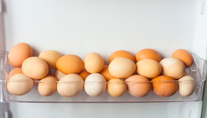 pack of eggs in the refrigerator