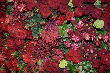 background of red flowers