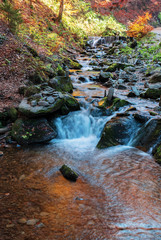 brook with cascade in beech forest. beautiful nature background in autumn season. colorful scenery, long exposure