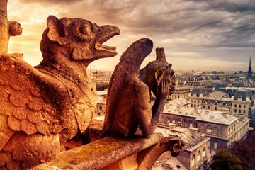Fototapete - Gargoyles or chimeras on the Notre Dame de Paris overlooking Paris, France