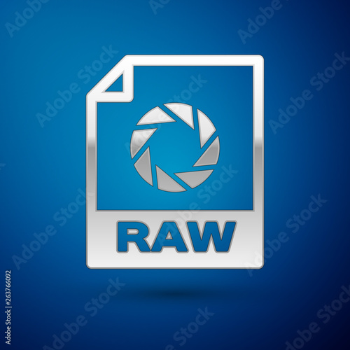 Silver RAW file document icon  Download raw button icon isolated on