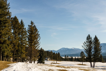 beautiful early spring view of the canadian alpine meadow with blue sky.
