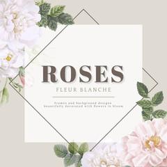 Roses fleur blanche card design