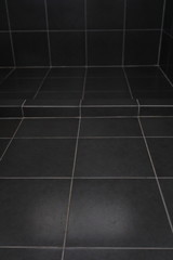 black tile floor in bathroom
