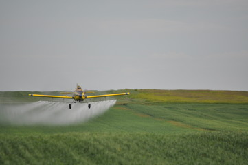 Crop Dusting Spray Wall mural