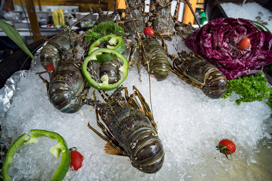 Fresh lobsters on ice. Street food in Asia spiny lobsters close-up.