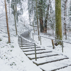 Stairs in winter park