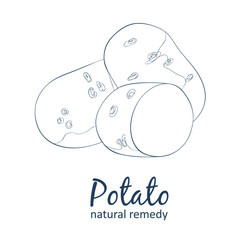 Whole and half potato vegetable. Cartoon vector food black and white image. Hand drawn linear illustration on white background