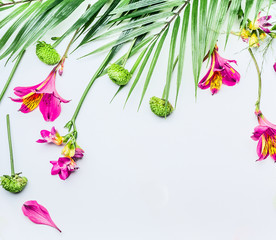 Wall Mural - Border with tropical leaves and exotic flowers on white background, top view. Copy space. Floral frame. Flat lay