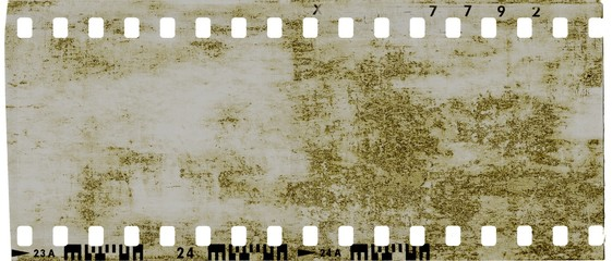 Film strip frame with cracked old reptile skin texture.