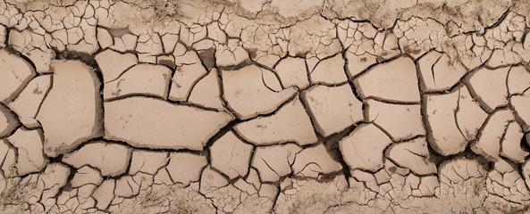 ひび割れた土