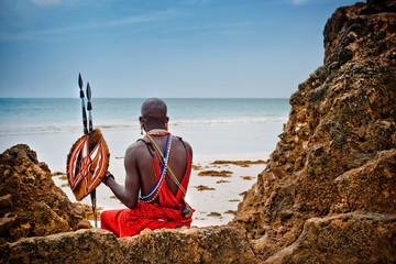 Fototapeta portrait of a Maasai warrior. obraz