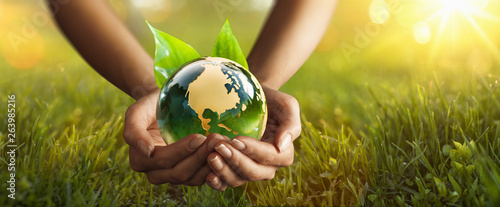 Wall mural Green Planet in Your Hands. Environment Concept