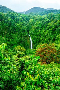 Costa Rica, Jungle landscape with the waterfall La Fortuna