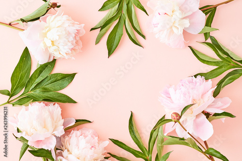 Flat lay frame with light pink peonies on a pink background