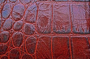 Wall Mural - Brown crocodile skin texture background, closeup.