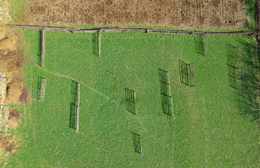 green field ready for hay processing. aerial view
