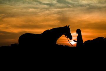 Sunset Silhouette of Teenage Girl and Horse Together