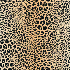 Leopard skin pattern. Vector seamless texture. Animal print, jaguar, cheetah