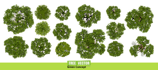Trees top view for landscape vector illustration. - fototapety na wymiar